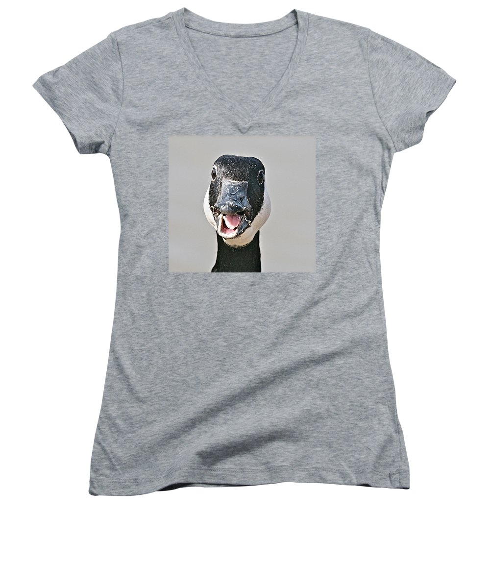 Goose Women's V-Neck (Athletic Fit) featuring the photograph Wwhhaaat by Robert Pearson