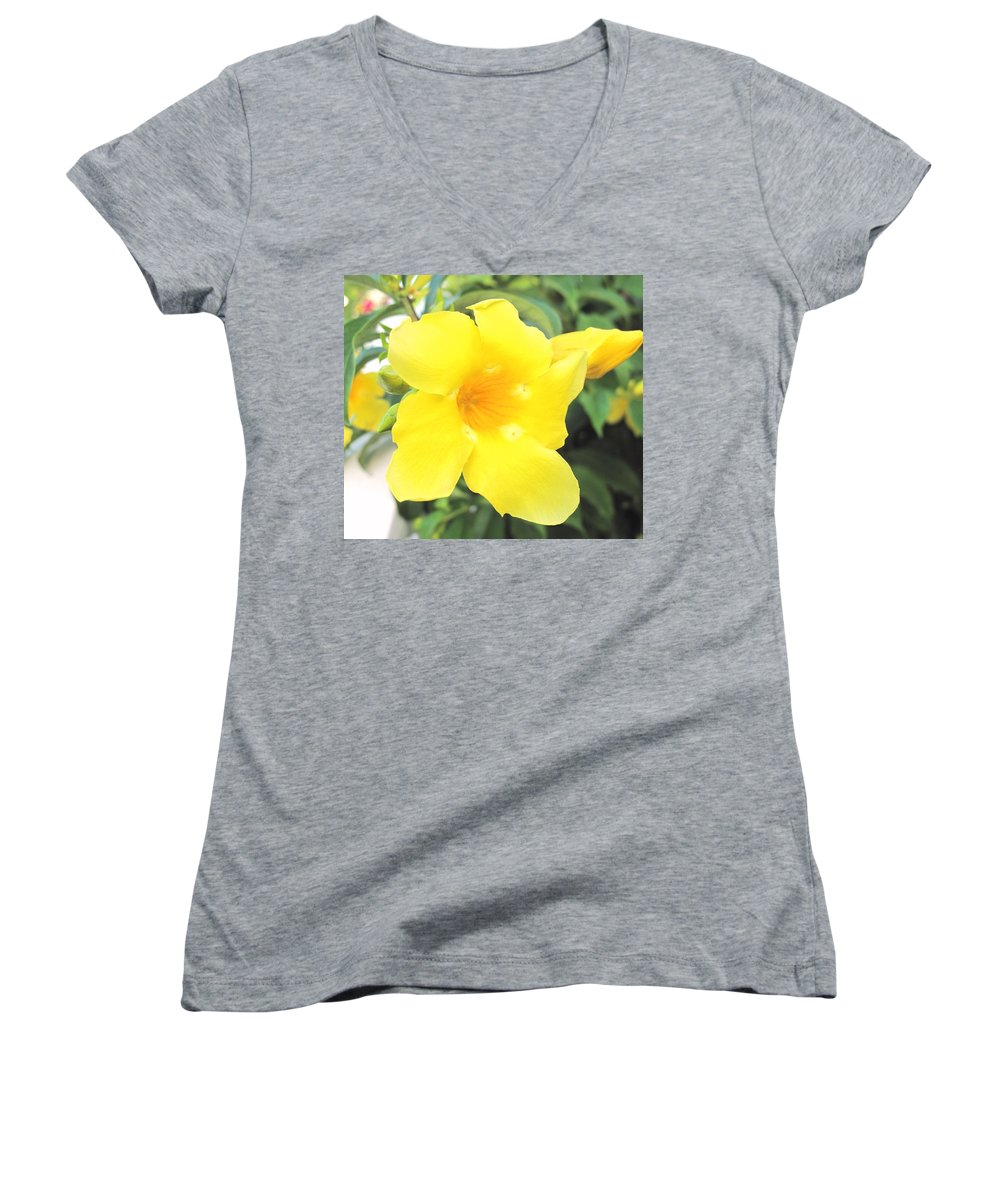 Yellow Women's V-Neck T-Shirt featuring the photograph Yellow Hibiscus St Kitts by Ian MacDonald
