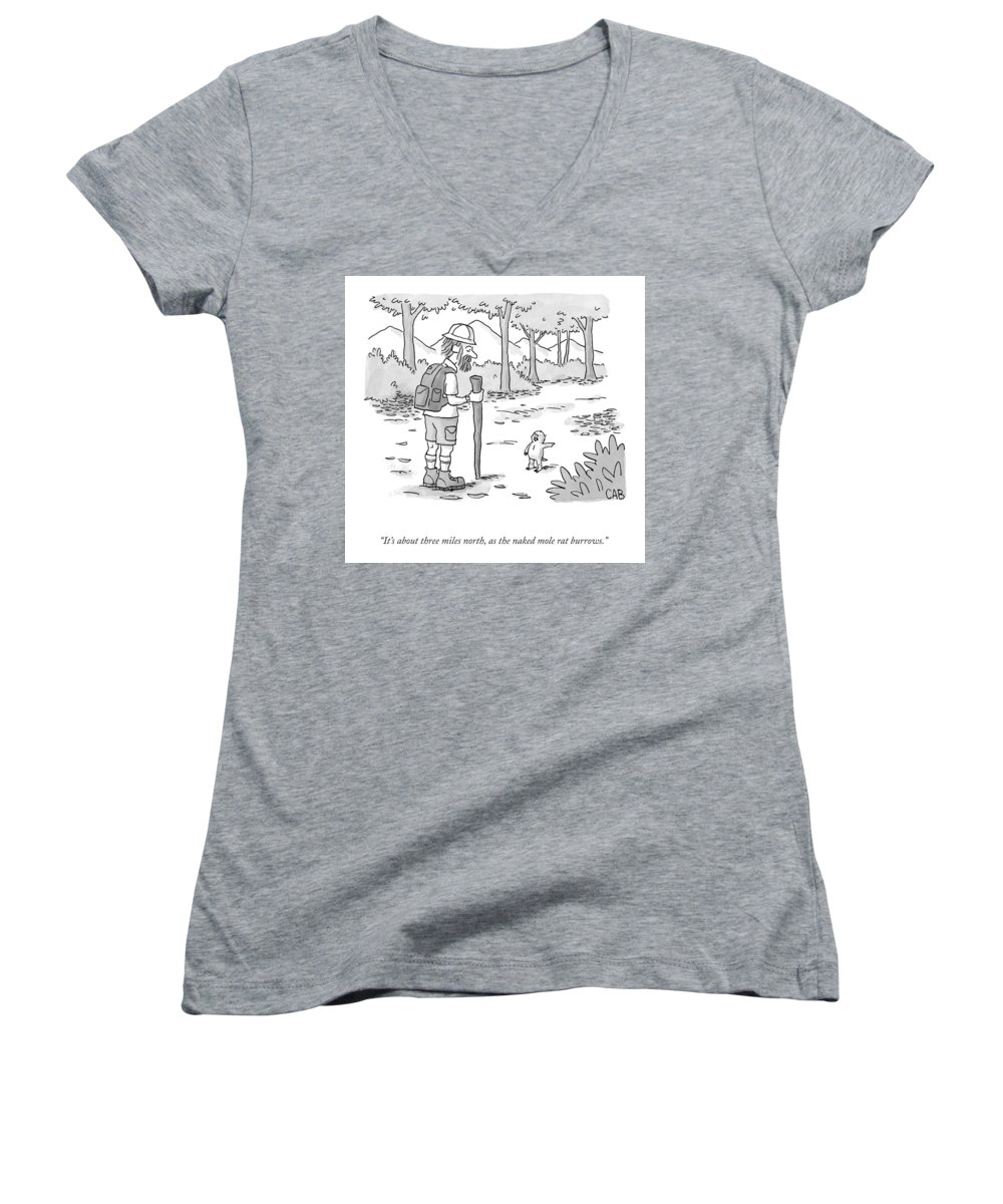 It's About Three Miles North Women's V-Neck featuring the drawing As The Naked Mole Rat Burrows by Adam Cooper