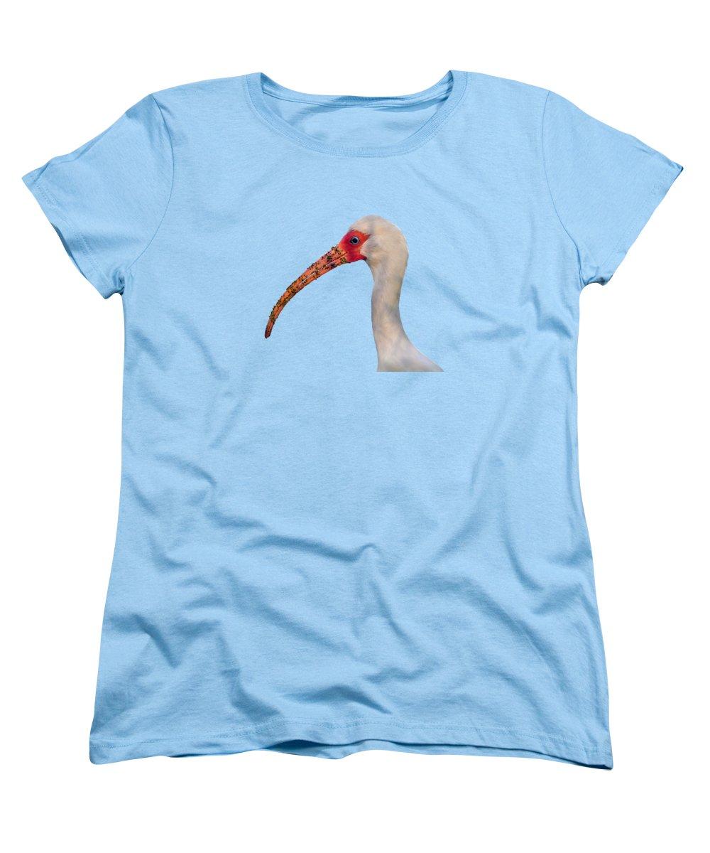 Ibis Women's T-Shirts