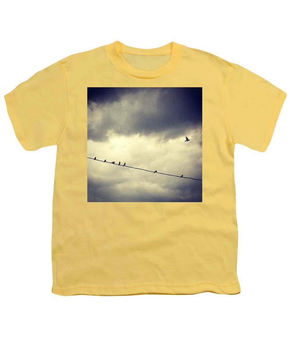 Youth T-Shirt featuring the photograph Da Birds by Katie Cupcakes