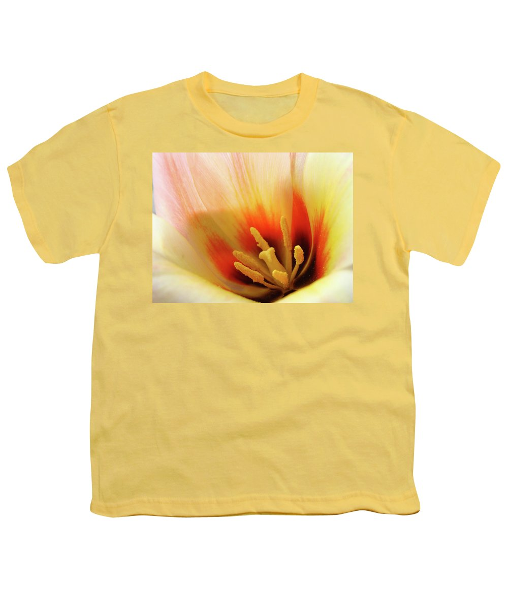 �tulips Artwork� Youth T-Shirt featuring the photograph Tulip Flower Artwork 31 Tulips Flowers Macro Spring Floral Art Prints by Baslee Troutman