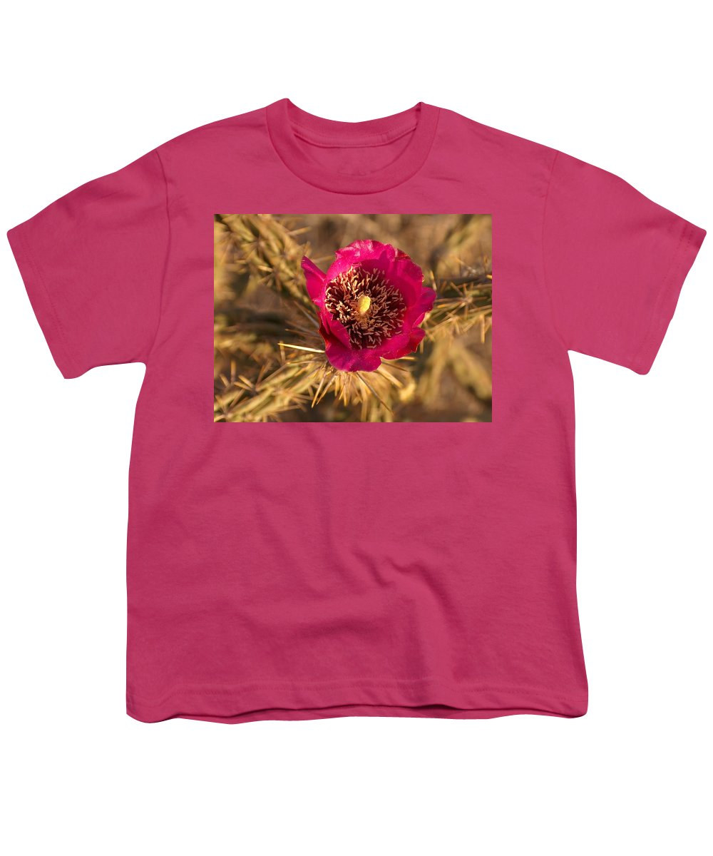 Cactus Flowers Wildflowers Youth T-Shirt featuring the photograph Cactus Flower 1 by Tim McCarthy