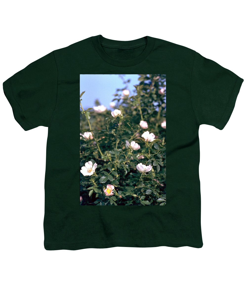 Anemone Youth T-Shirt featuring the photograph Anemone by Flavia Westerwelle