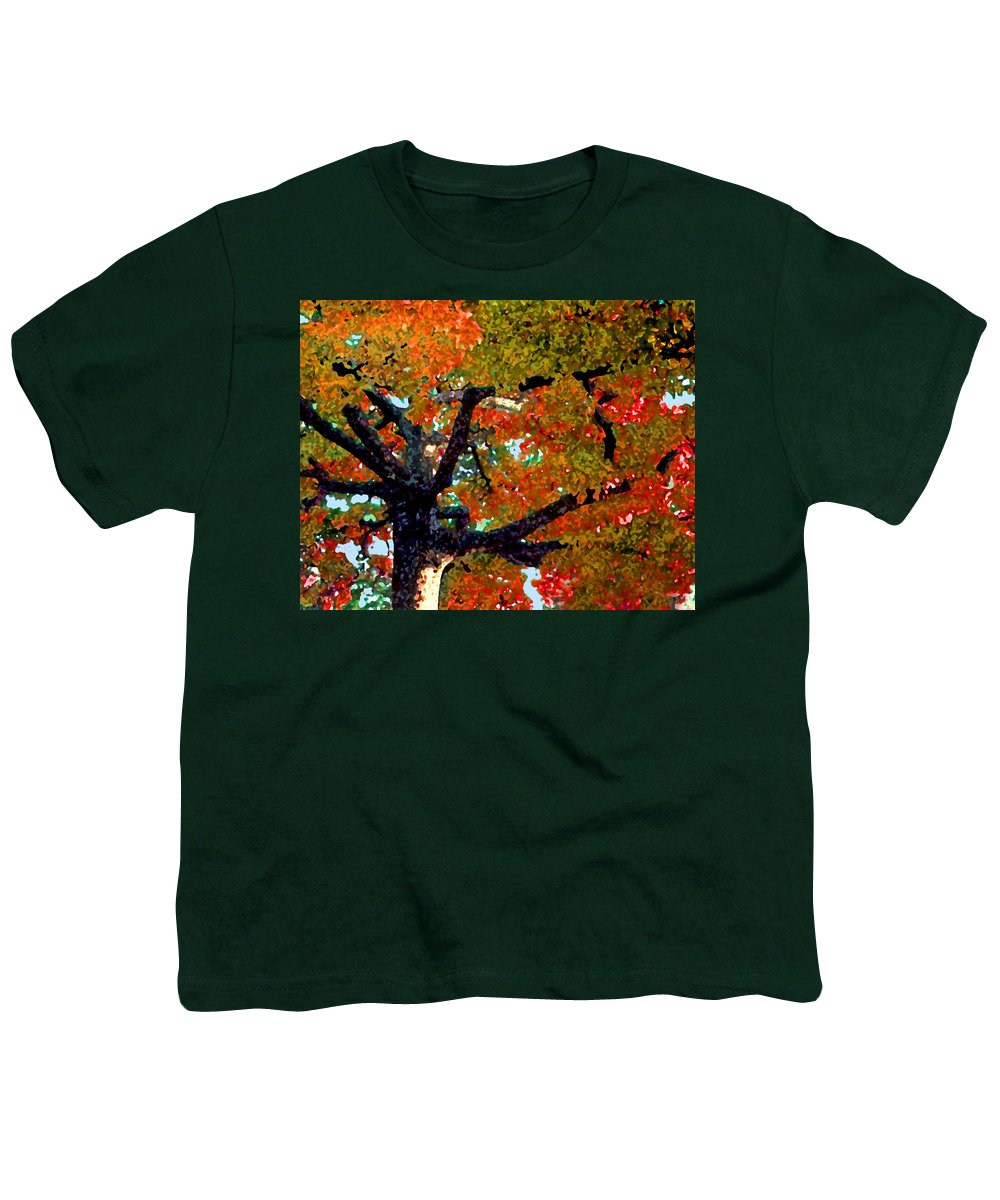 Fall Youth T-Shirt featuring the photograph Autumn Tree by Steve Karol