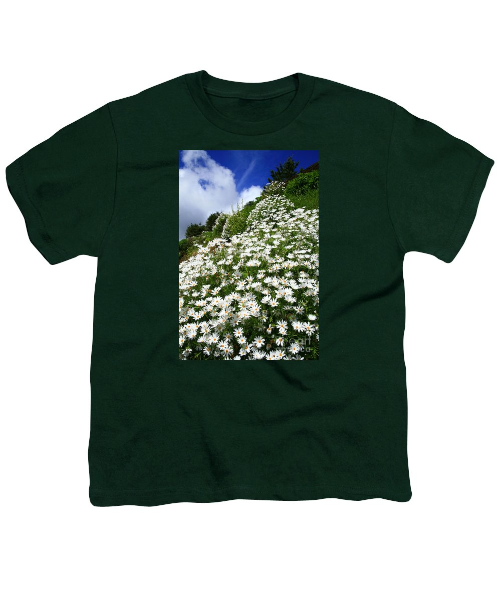 Countryside Youth T-Shirt featuring the photograph Daisies by Gaspar Avila