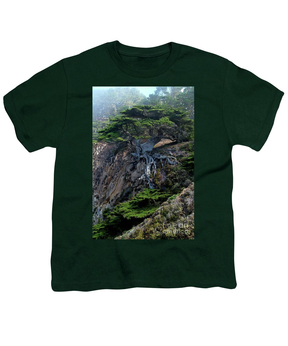 Landscape Youth T-Shirt featuring the photograph Point Lobos Veteran Cypress Tree by Charlene Mitchell