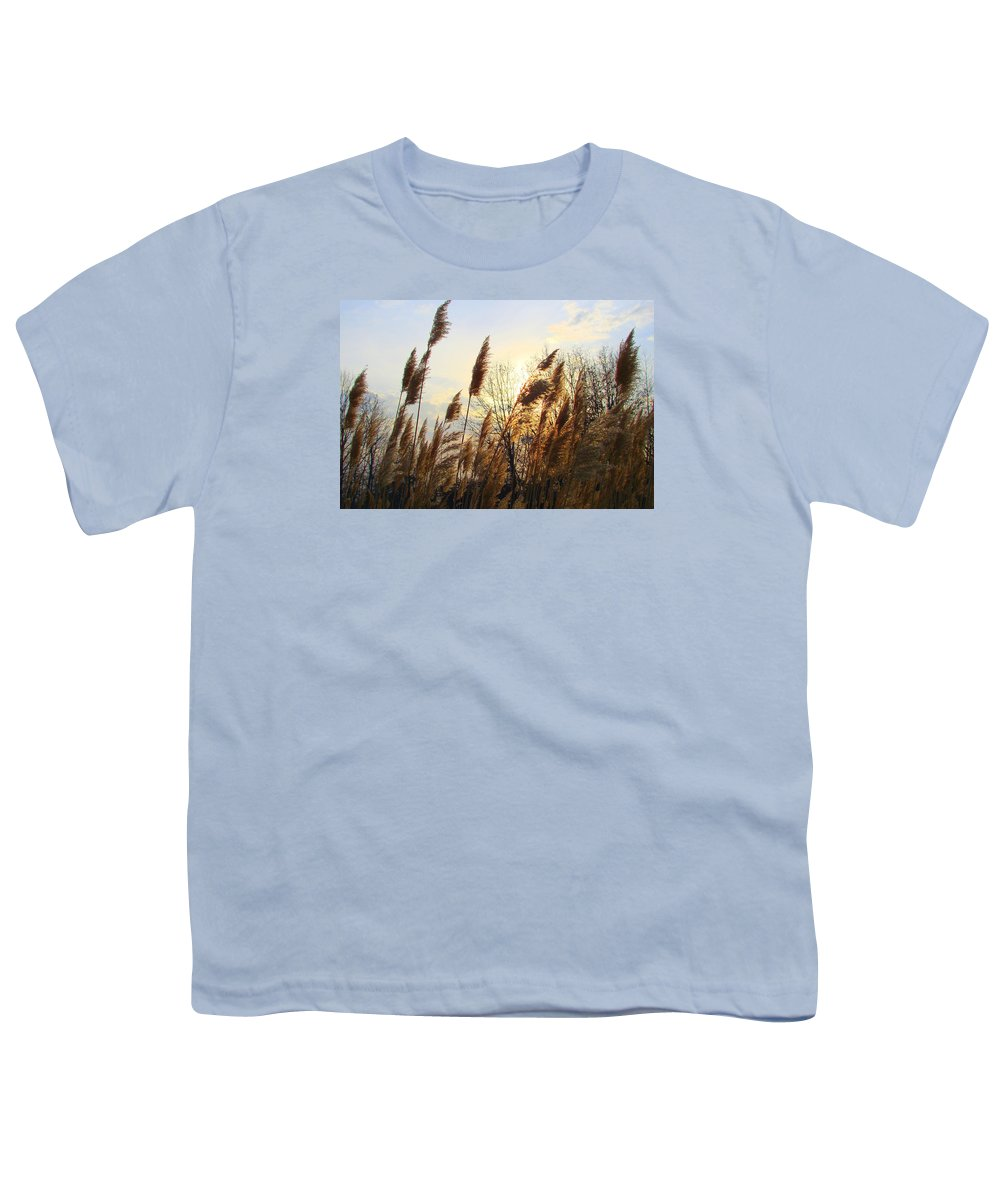 Pampasgrass Youth T-Shirt featuring the photograph Amber Waves Of Pampas Grass by J R Seymour