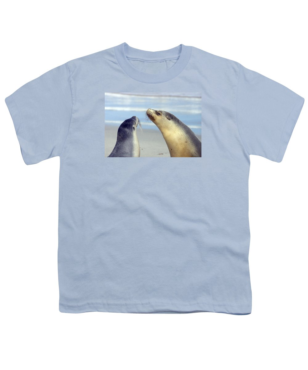 Sea Lion Youth T-Shirt featuring the photograph Backtalk by Mike Dawson