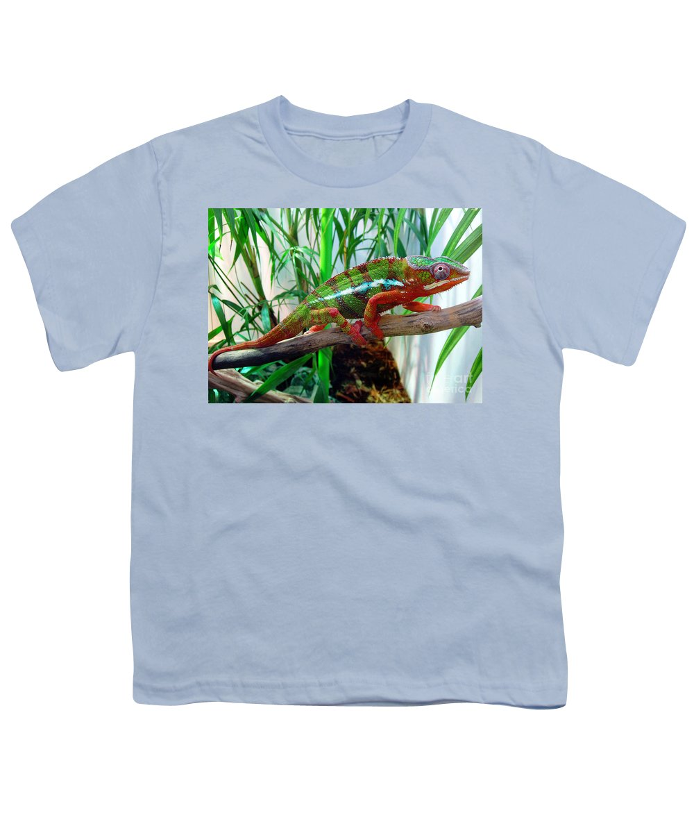 Chameleon Youth T-Shirt featuring the photograph Colorful Chameleon by Nancy Mueller