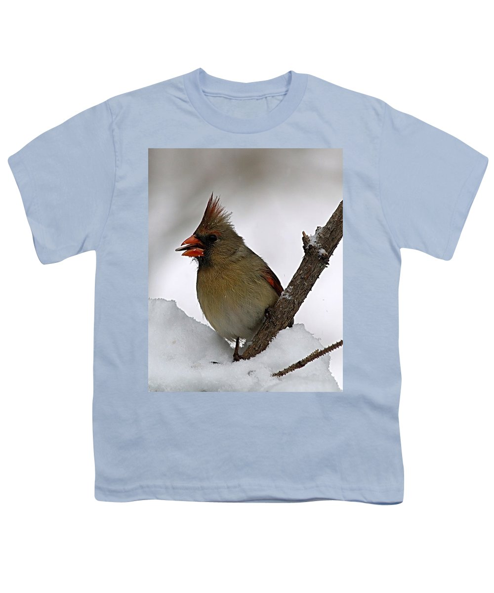 Bird Youth T-Shirt featuring the photograph I Love Seeds by Gaby Swanson