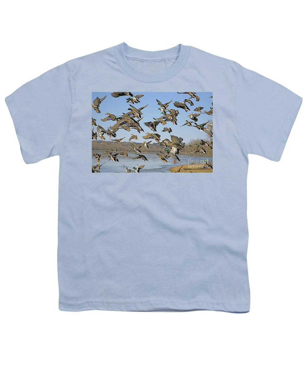Nature Feather Youth T-Shirt featuring the photograph Mad Rush by Robert Pearson