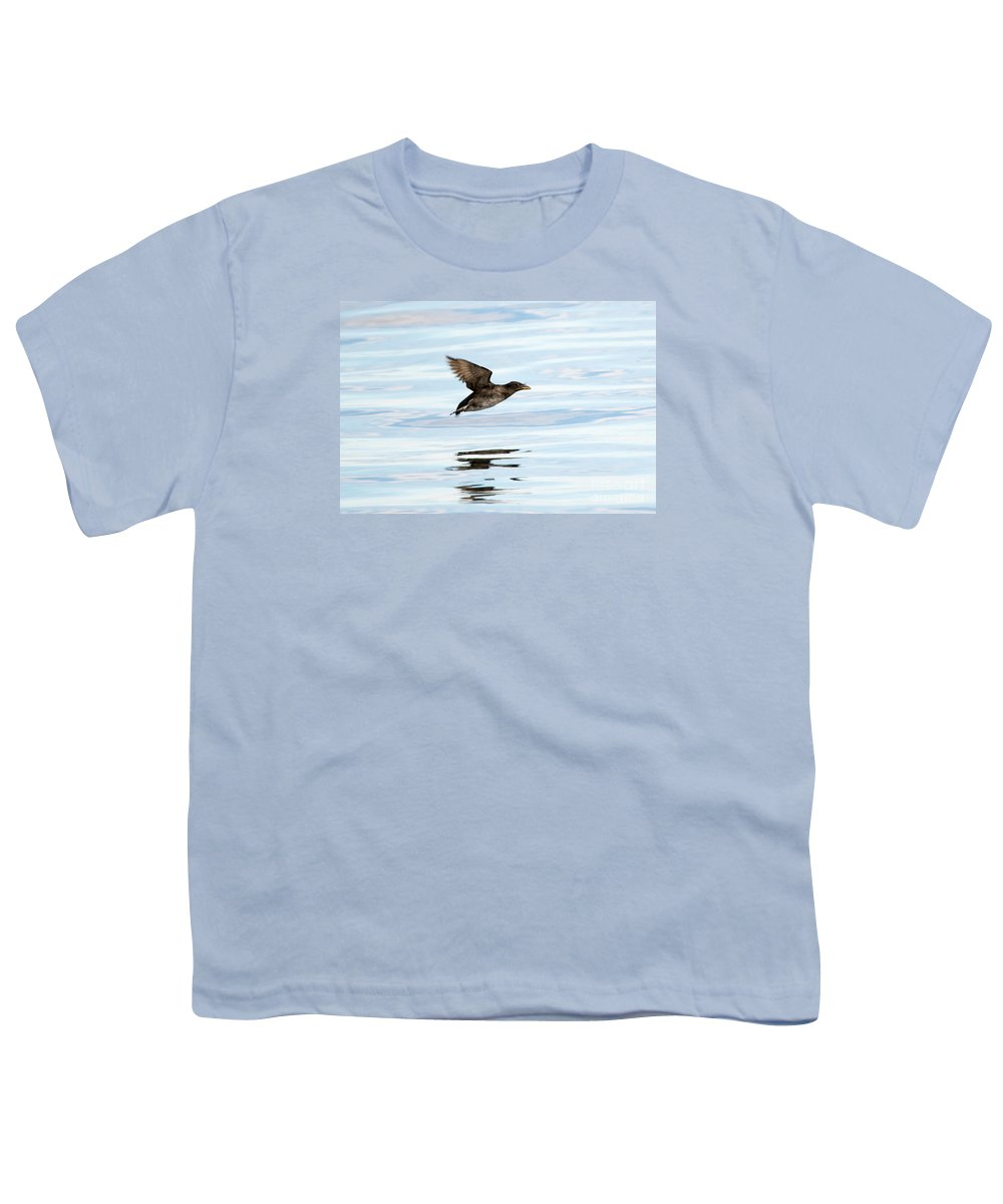 Auklets Youth T-Shirts