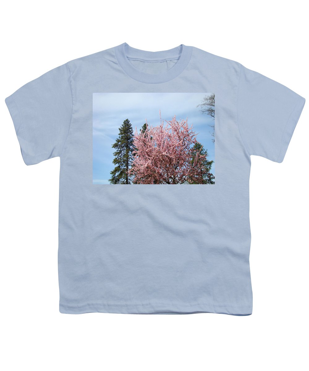 Trees Youth T-Shirt featuring the photograph Spring Trees Bossoming Landscape Art Prints Pink Blossoms Clouds Sky by Baslee Troutman