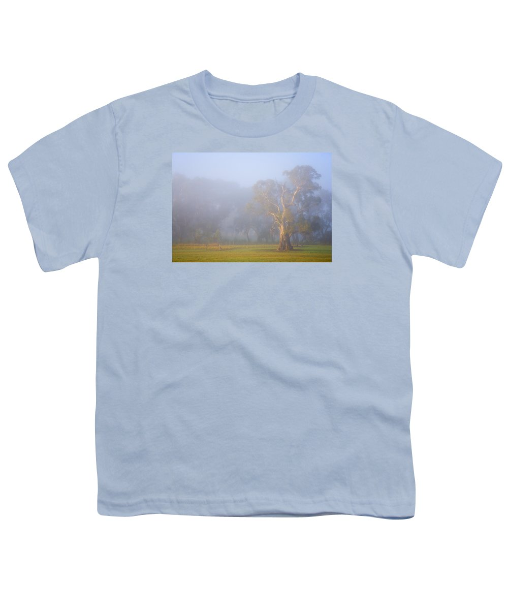Tree Youth T-Shirt featuring the photograph White Gum Morning by Mike Dawson