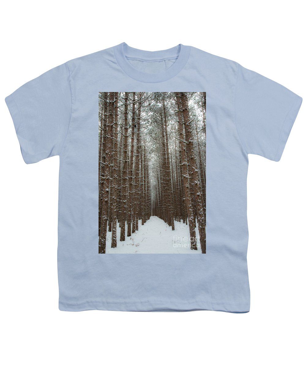 Sleeping Bear Dunes Youth T-Shirt featuring the photograph Forest In Sleeping Bear Dunes In January by Twenty Two North Photography