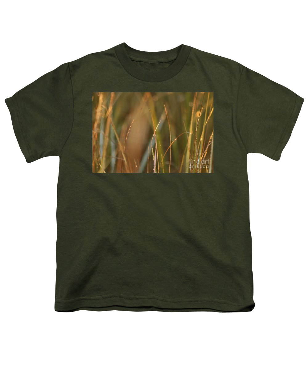 Dew Youth T-Shirt featuring the photograph Dewy Grasses by Nadine Rippelmeyer