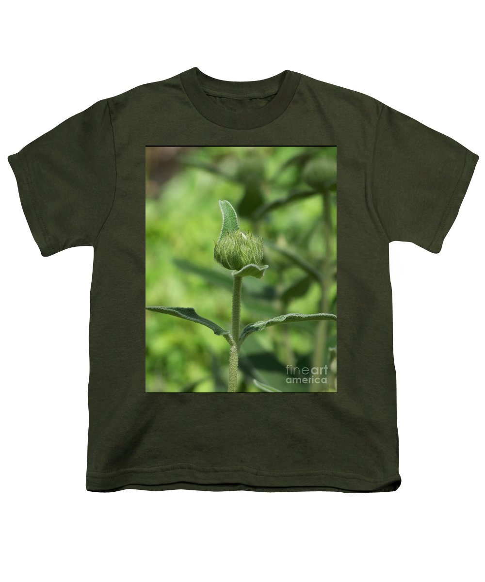 Plants Youth T-Shirt featuring the photograph Its A Green World by Kathy McClure