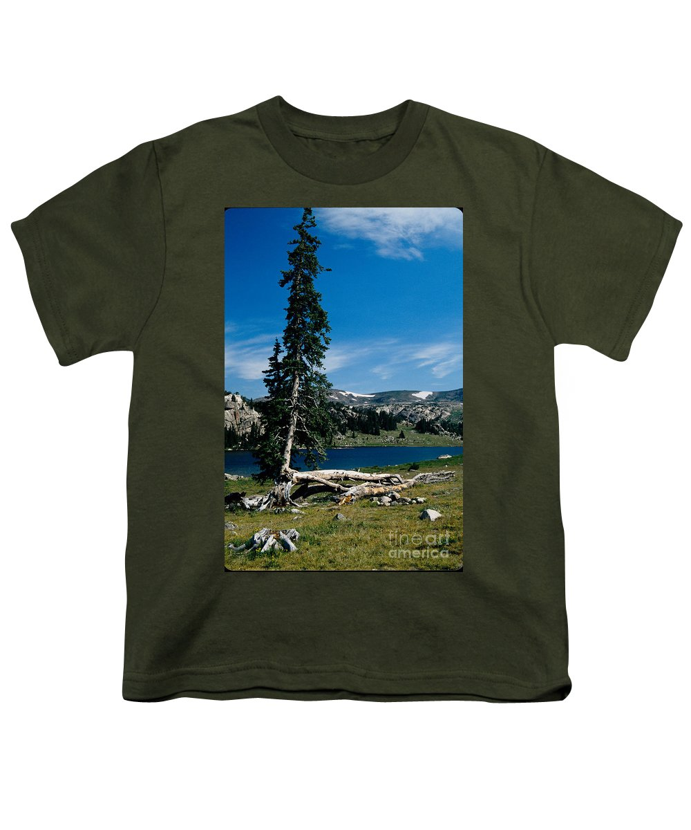 Mountains Youth T-Shirt featuring the photograph Lone Tree At Pass by Kathy McClure