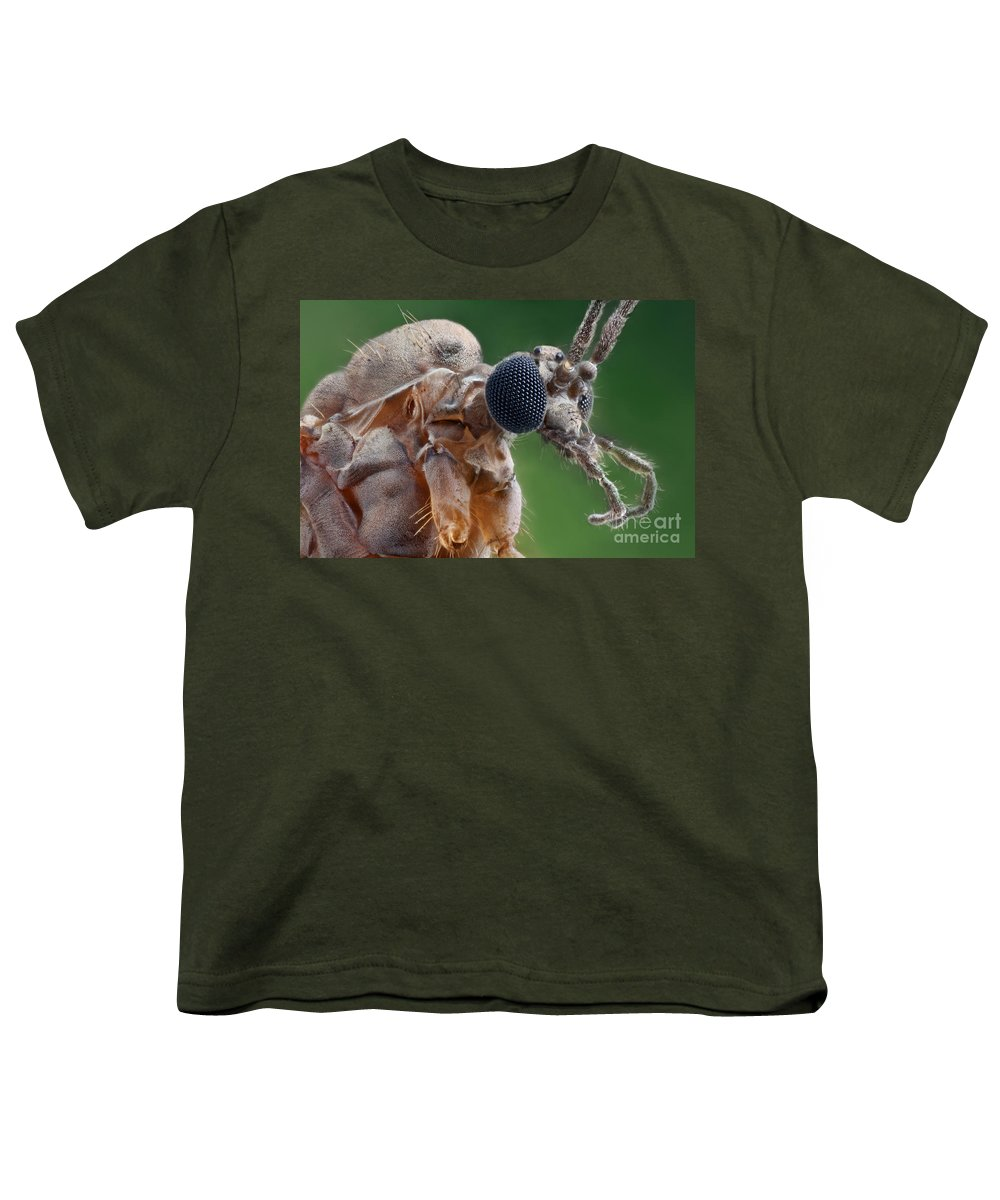 Winter Crane Fly Youth T-Shirt featuring the photograph Winter Crane Fly by Matthias Lenke