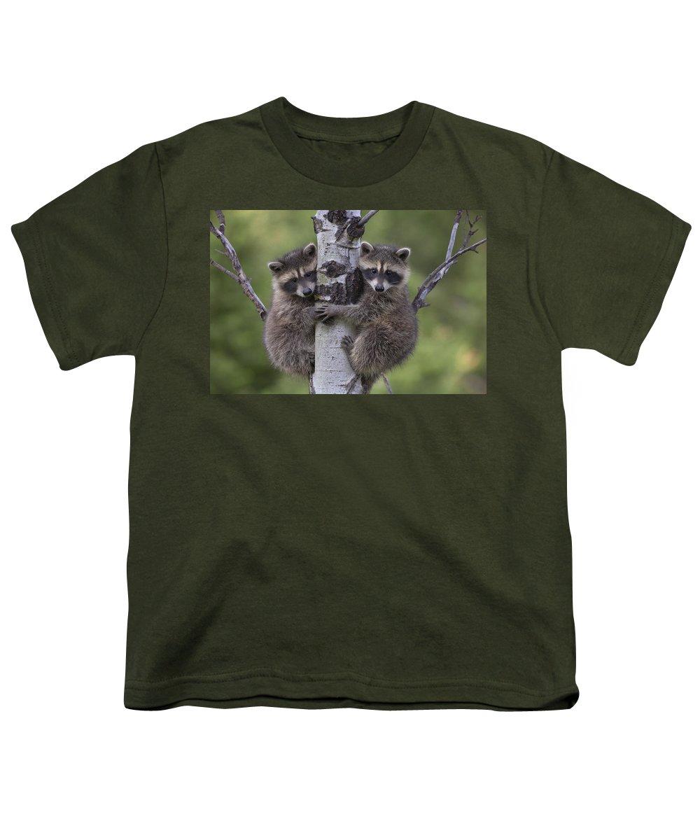 Vertebrata Youth T-Shirts
