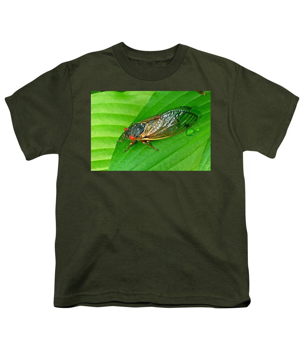 17 Youth T-Shirt featuring the photograph 17 Year Periodical Cicada by Douglas Barnett
