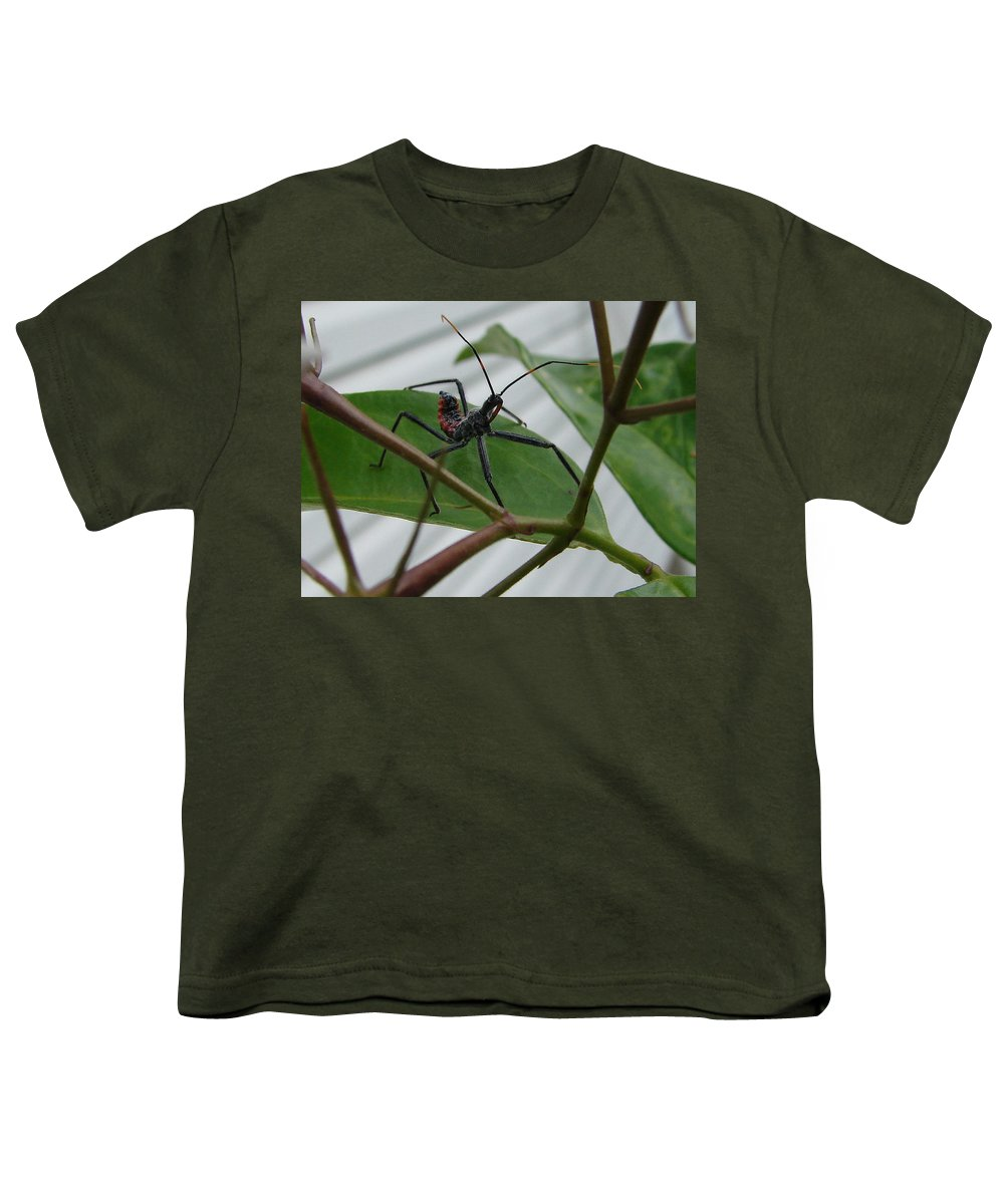 Insect Red Black Green Leaf Youth T-Shirt featuring the photograph Assassin Bug by Luciana Seymour