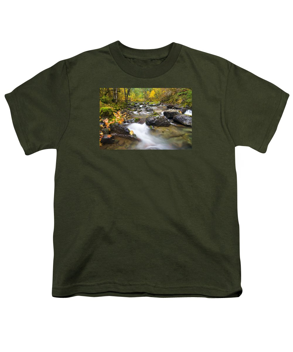 Fall Youth T-Shirt featuring the photograph Autumn Passing by Mike Dawson