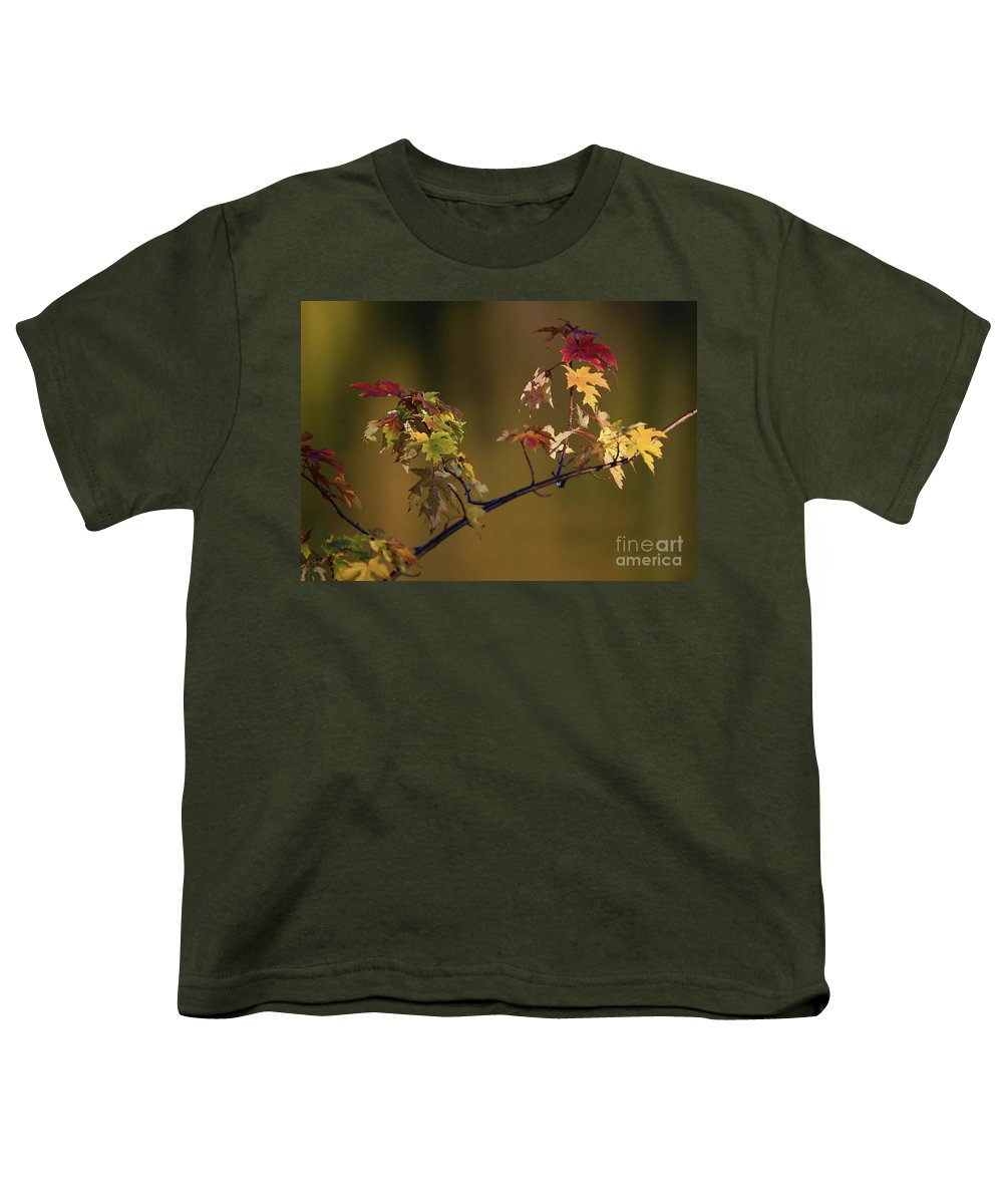 Fall Youth T-Shirt featuring the photograph Color On A Stick by Robert Pearson