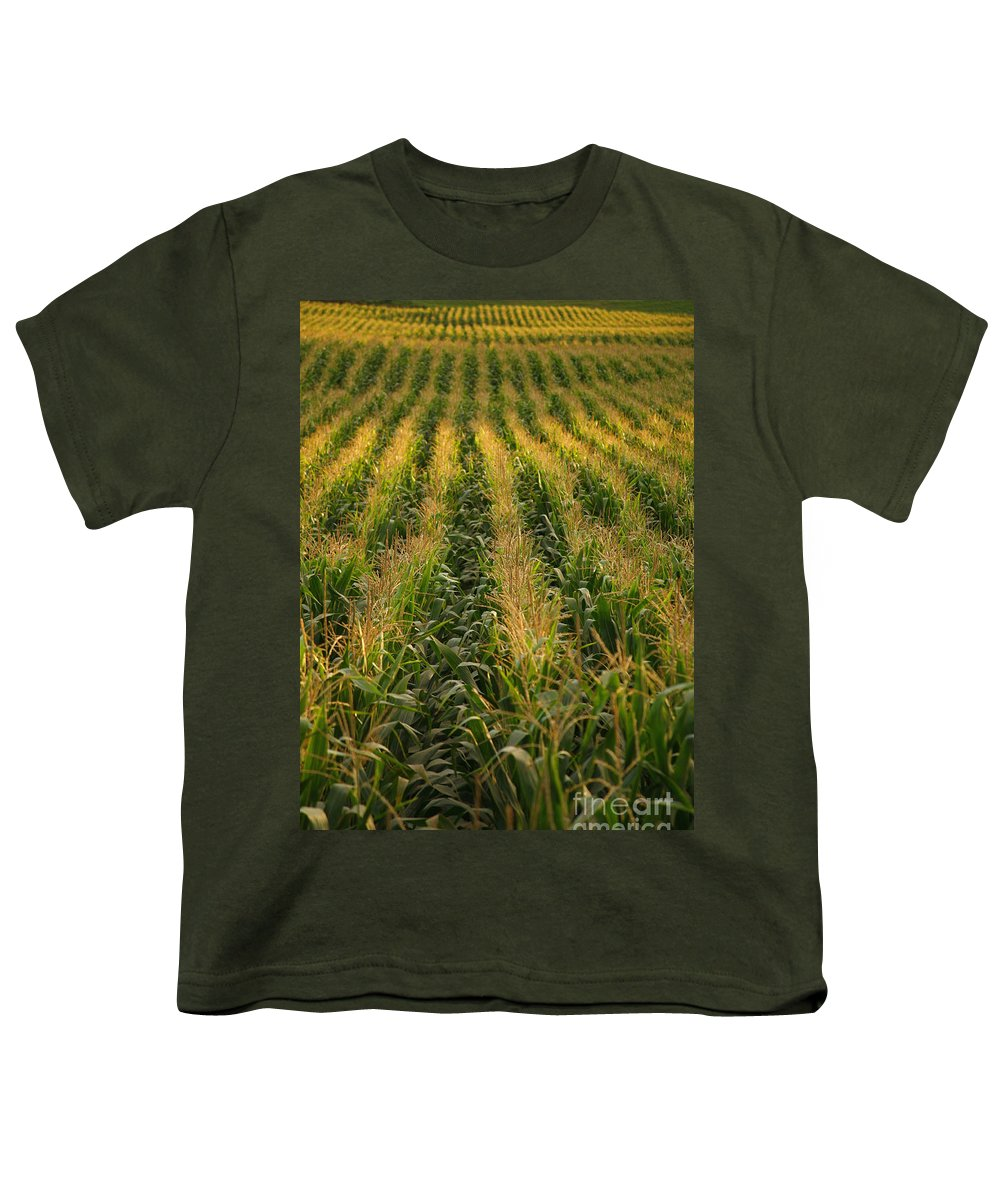Acores Youth T-Shirt featuring the photograph Corn Field by Gaspar Avila
