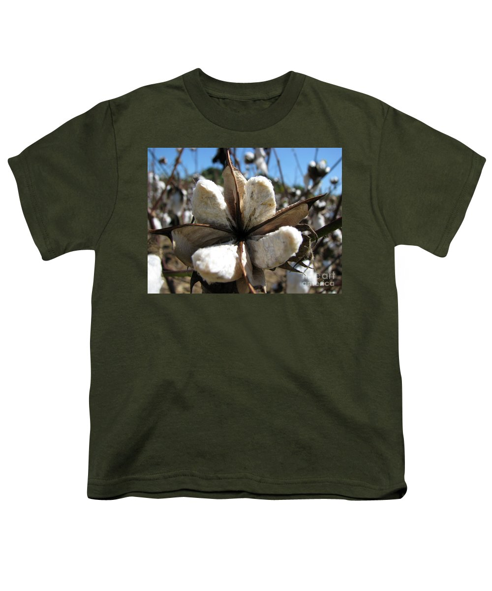 Cotton Youth T-Shirt featuring the photograph Cotton by Amanda Barcon