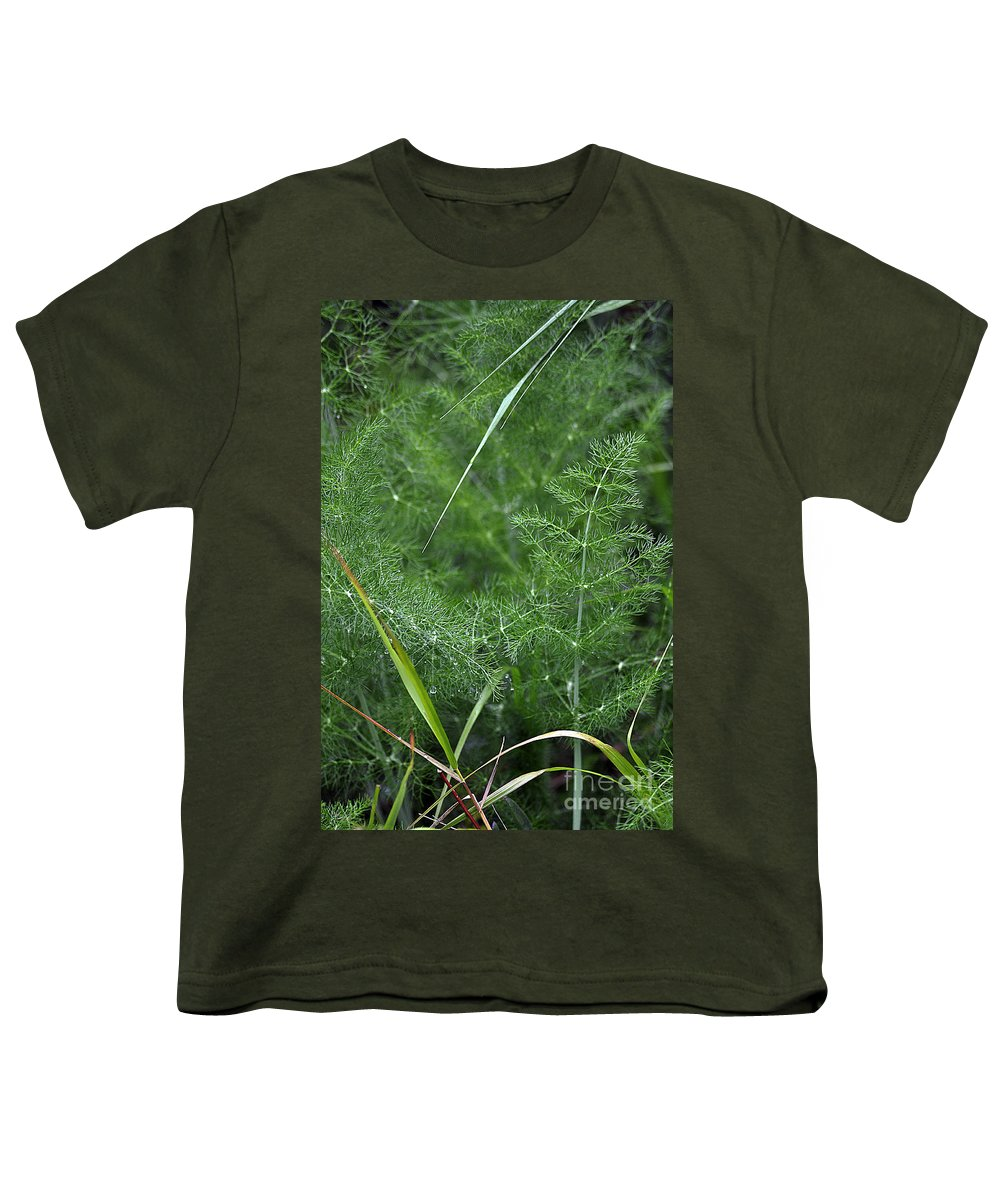 Clay Youth T-Shirt featuring the photograph Dew On The Ferns by Clayton Bruster