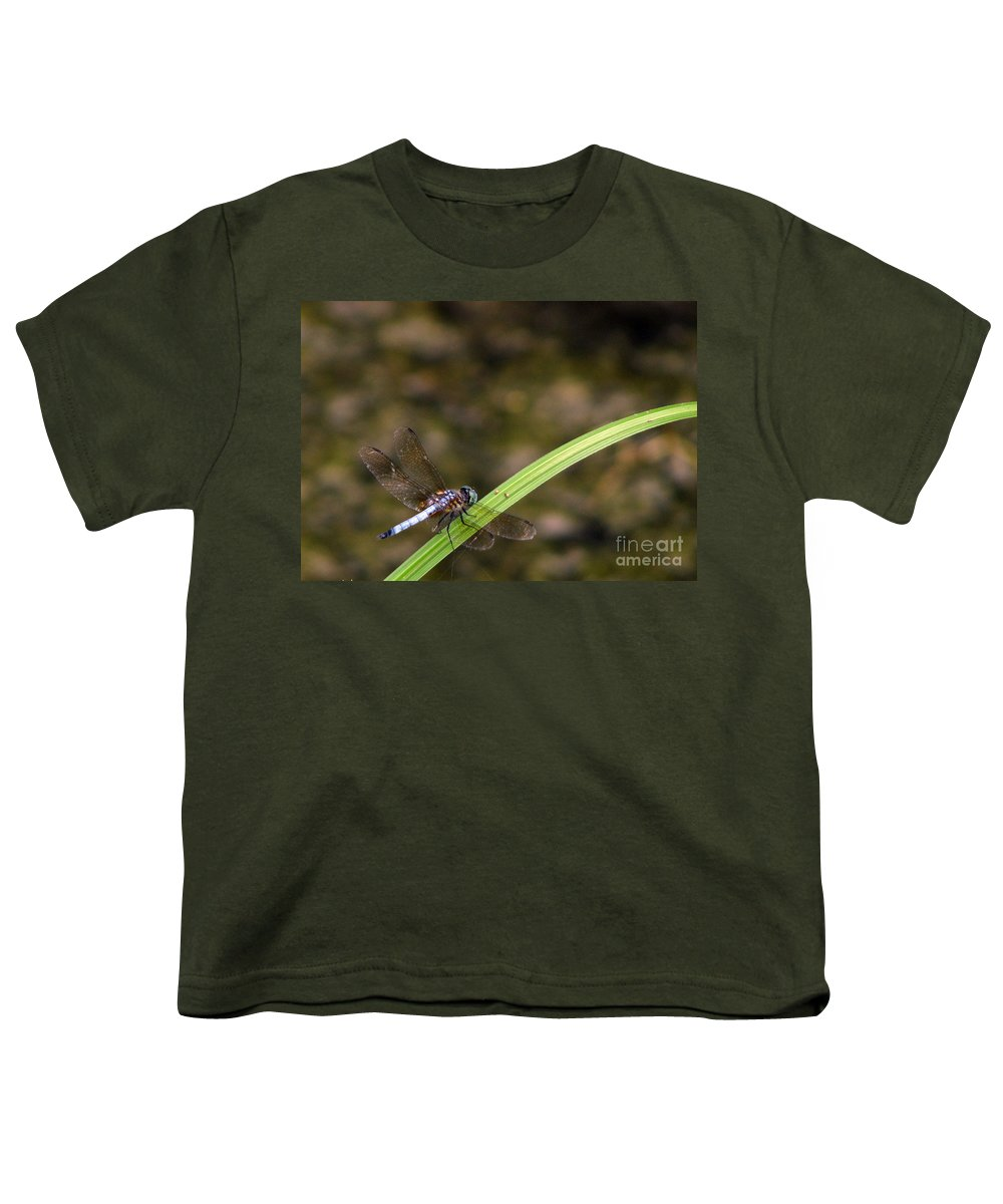 Dragonfly Youth T-Shirt featuring the photograph Dragonfly by Amanda Barcon