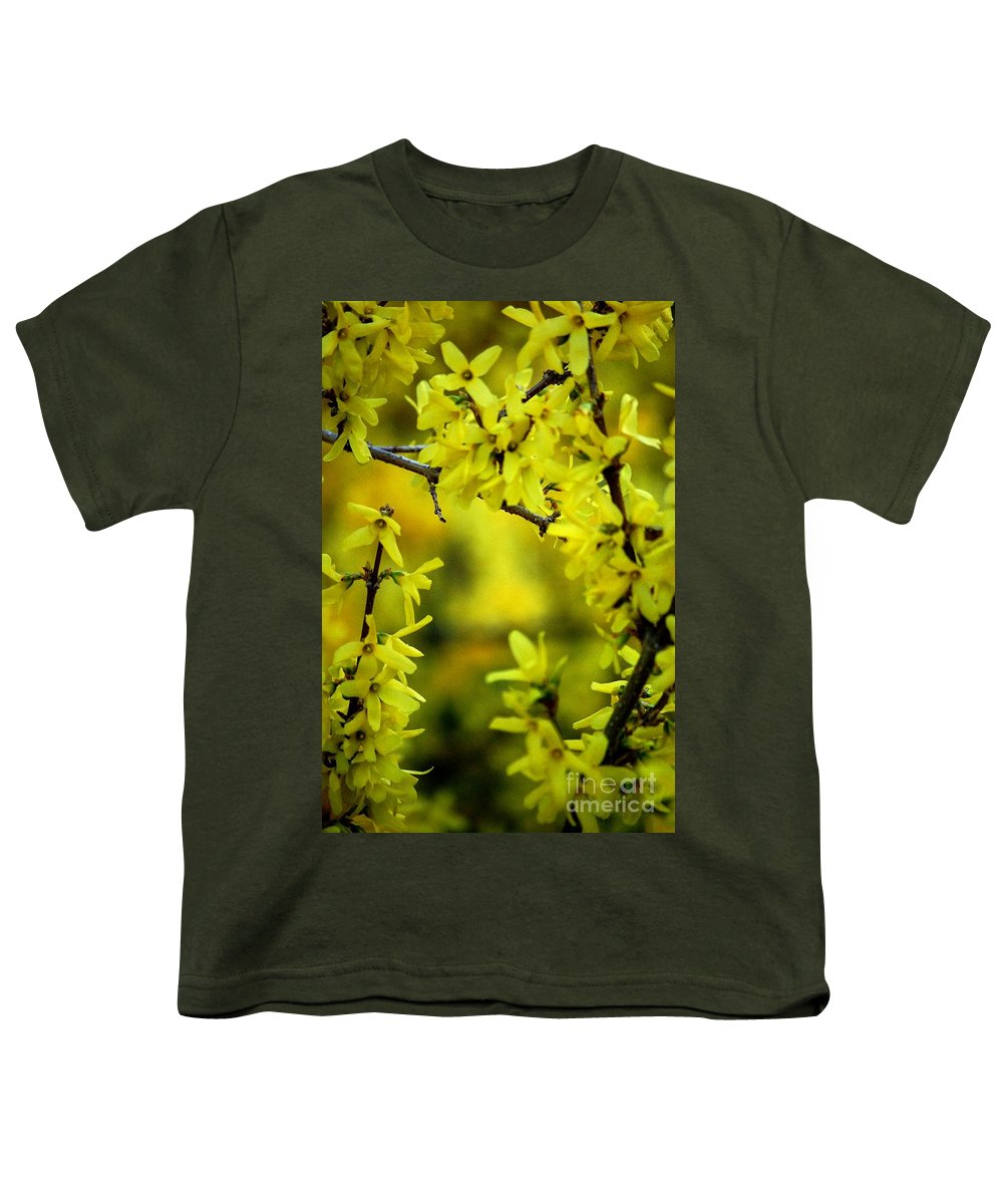 Spring Youth T-Shirt featuring the photograph Forsythia At The Hacienda by David Lane