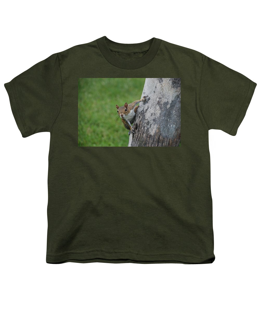 Squirrel Youth T-Shirt featuring the photograph Hanging On by Rob Hans