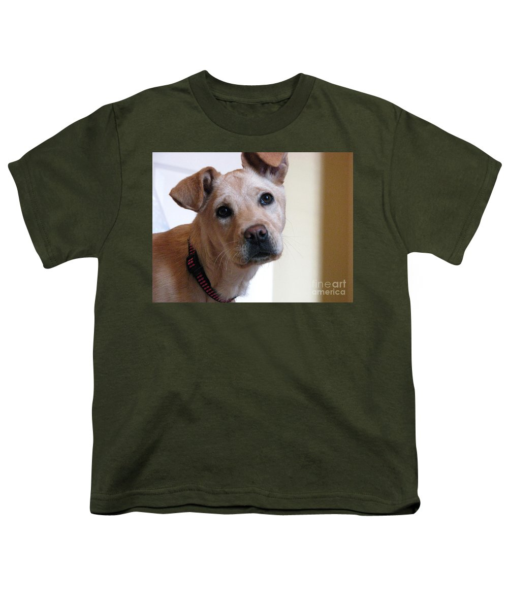 Dog Youth T-Shirt featuring the photograph Honey by Amanda Barcon