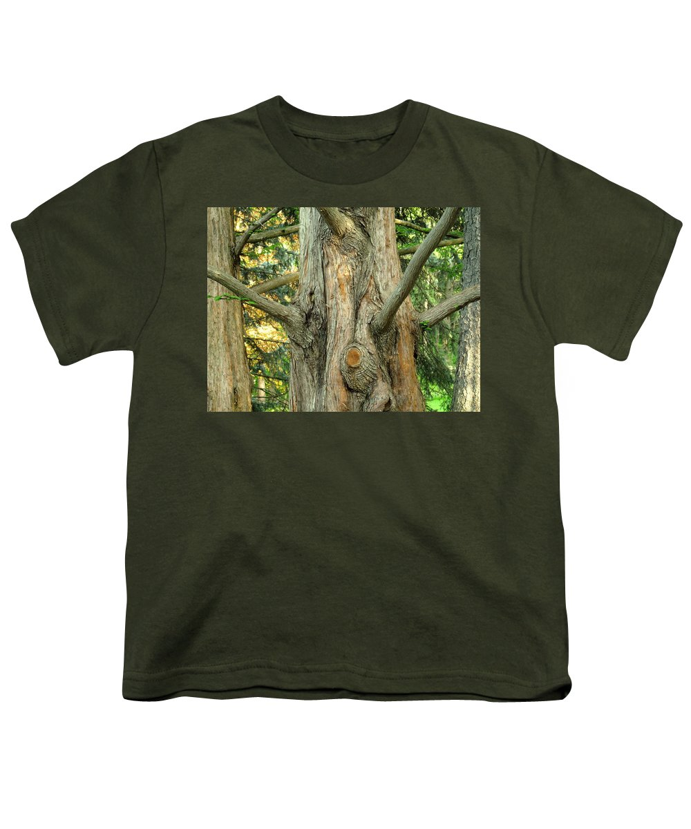 Tree Youth T-Shirt featuring the photograph Knarled by Ian MacDonald