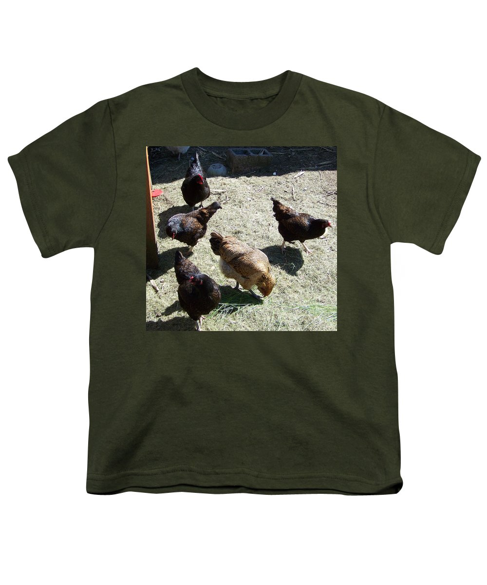 Hens Youth T-Shirt featuring the photograph Ladies Of The Pen by Laurie Kidd