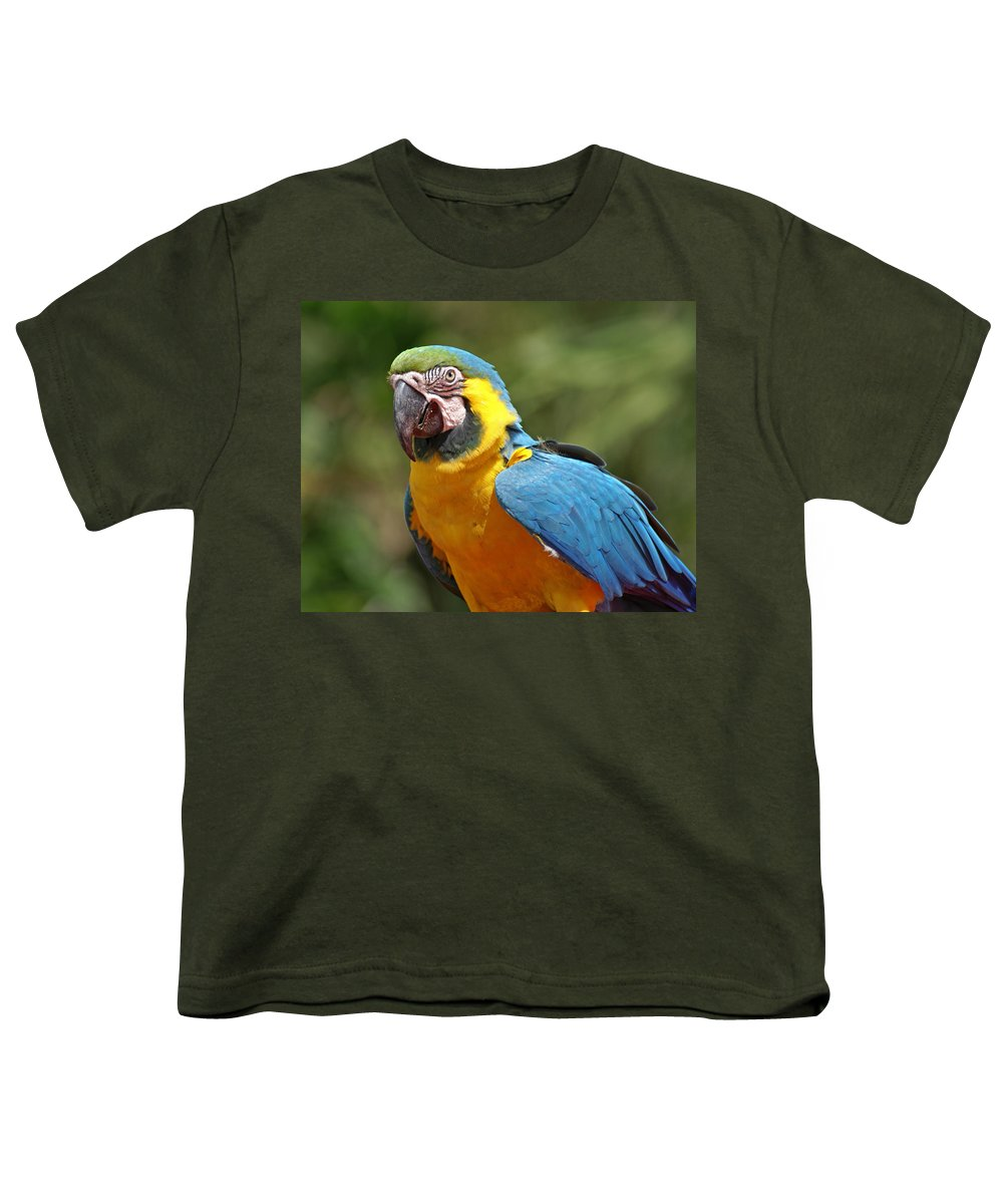 Parrot Youth T-Shirt featuring the photograph Macaw by Heather Coen