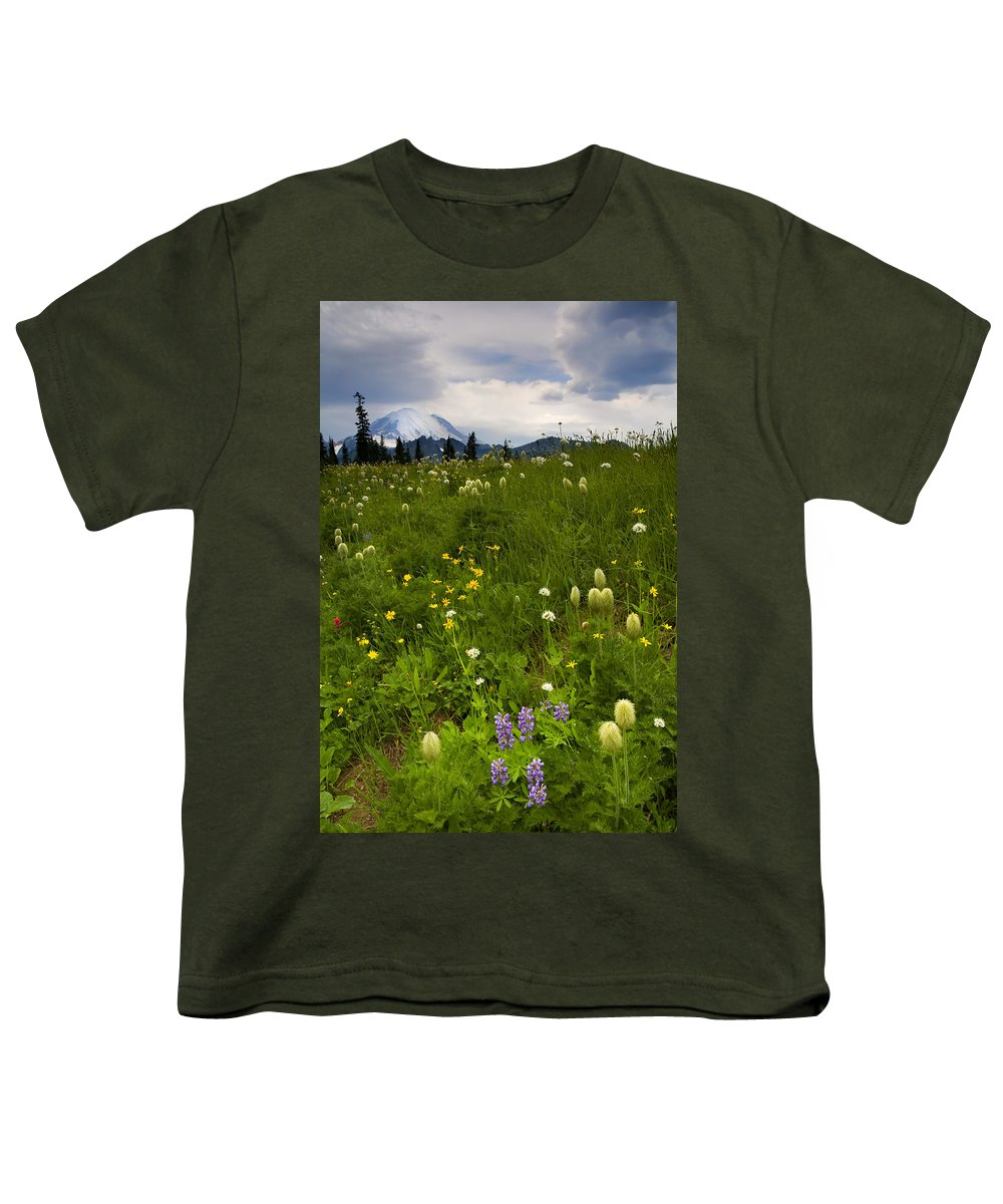 Rainier Youth T-Shirt featuring the photograph Meadow Beneath The Storm by Mike Dawson
