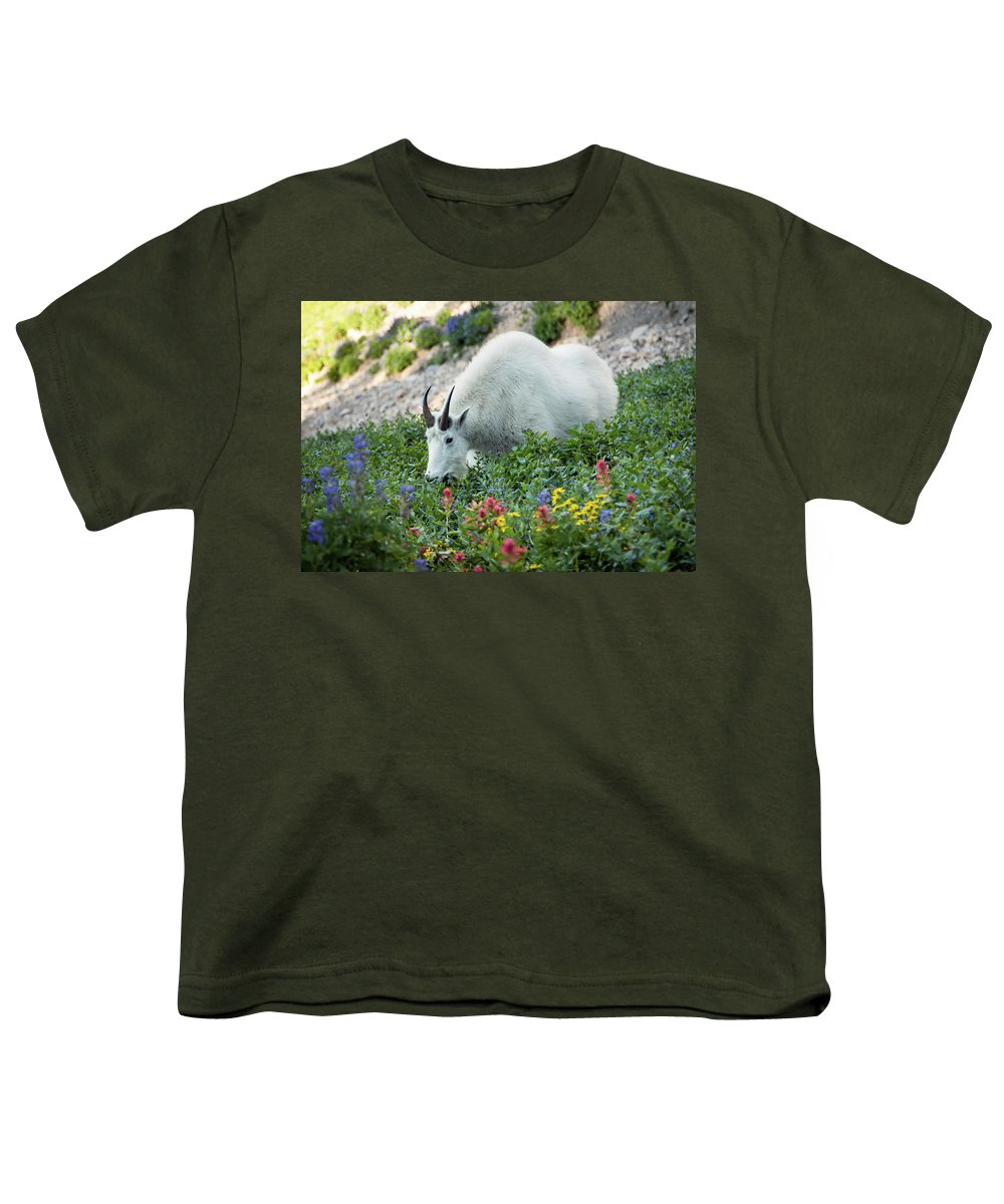 Mountain Goat Youth T-Shirt featuring the photograph Mountain Goat On Timp by Johnny Adolphson