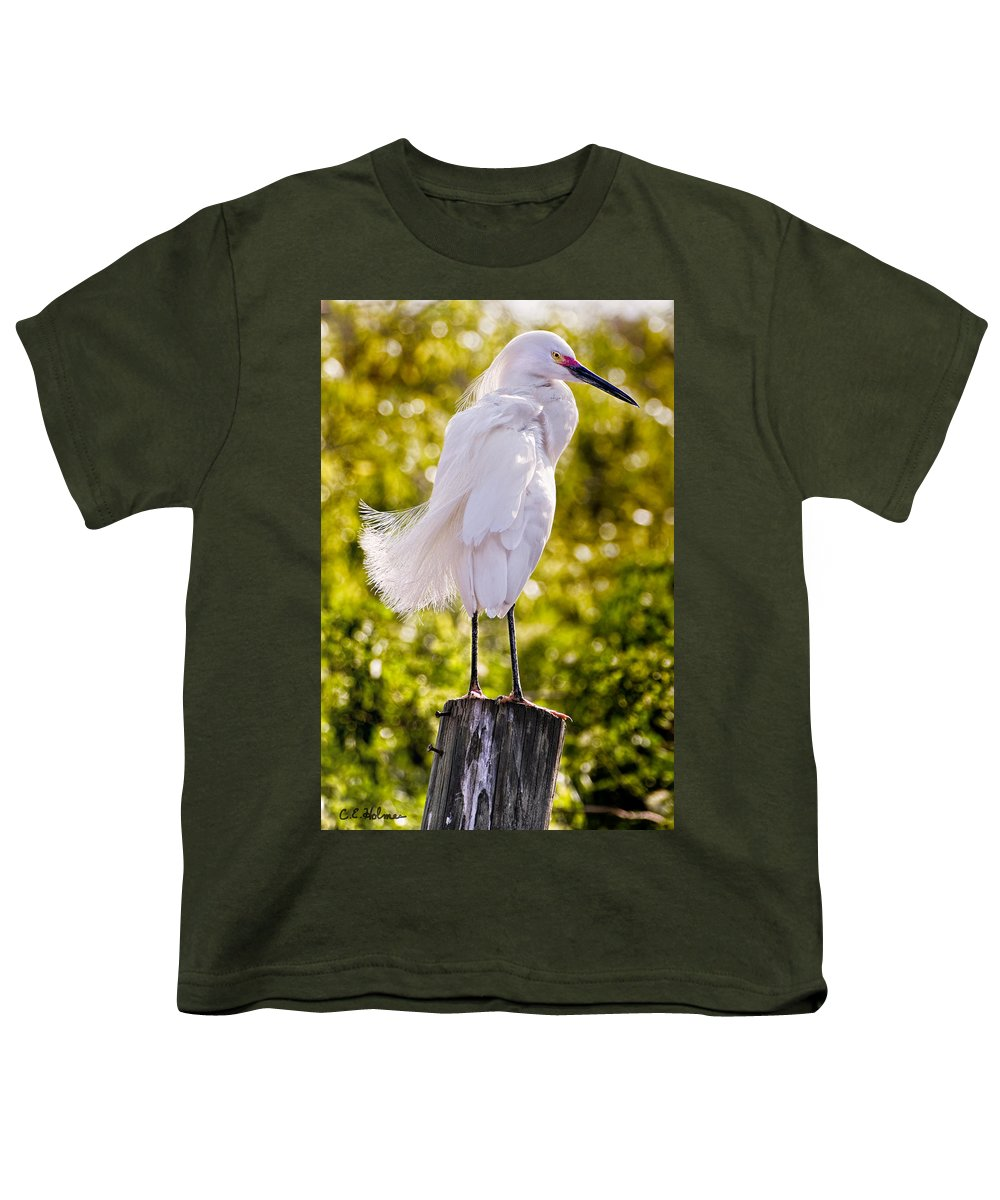 snowy Egret Youth T-Shirt featuring the photograph On Watch by Christopher Holmes