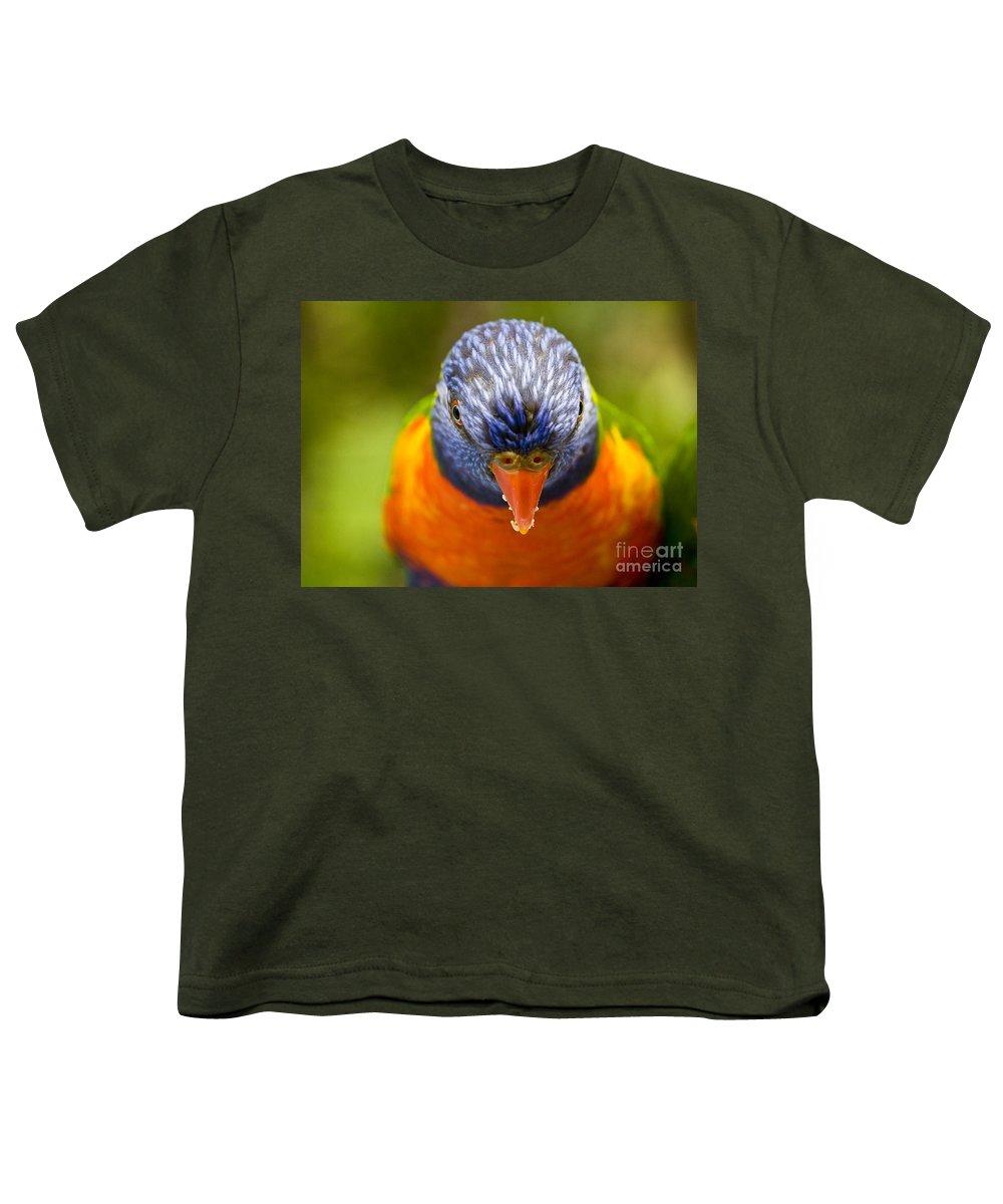 Rainbow Lorikeet Youth T-Shirt featuring the photograph Rainbow Lorikeet by Sheila Smart Fine Art Photography