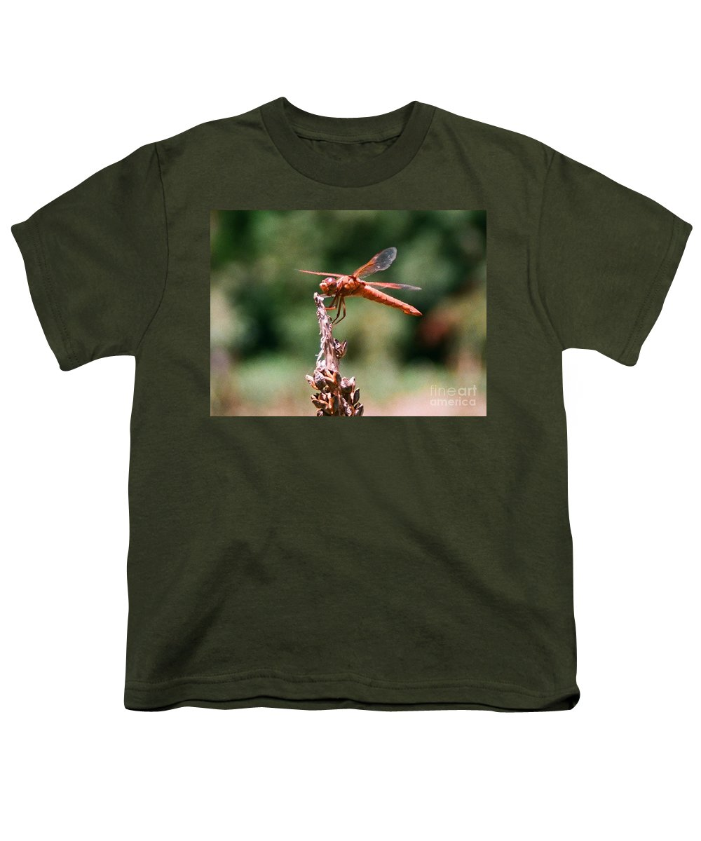 Dragonfly Youth T-Shirt featuring the photograph Red Dragonfly II by Dean Triolo
