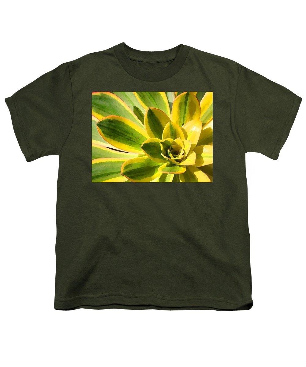 Landscape Youth T-Shirt featuring the photograph Sunburst Succulent Close-up 2 by Amy Vangsgard