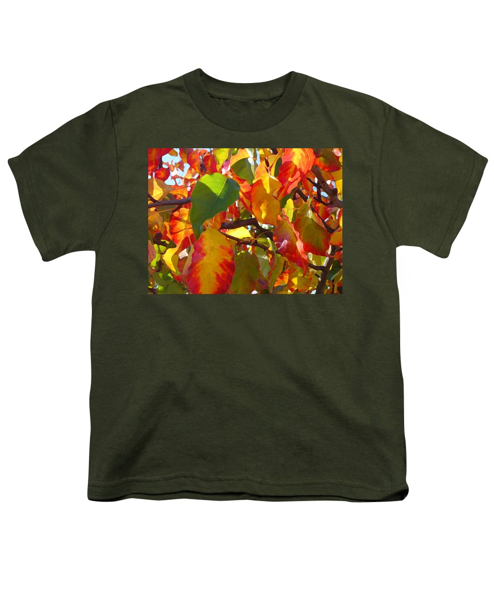 Fall Leaves Youth T-Shirt featuring the photograph Sunlit Fall Leaves by Amy Vangsgard