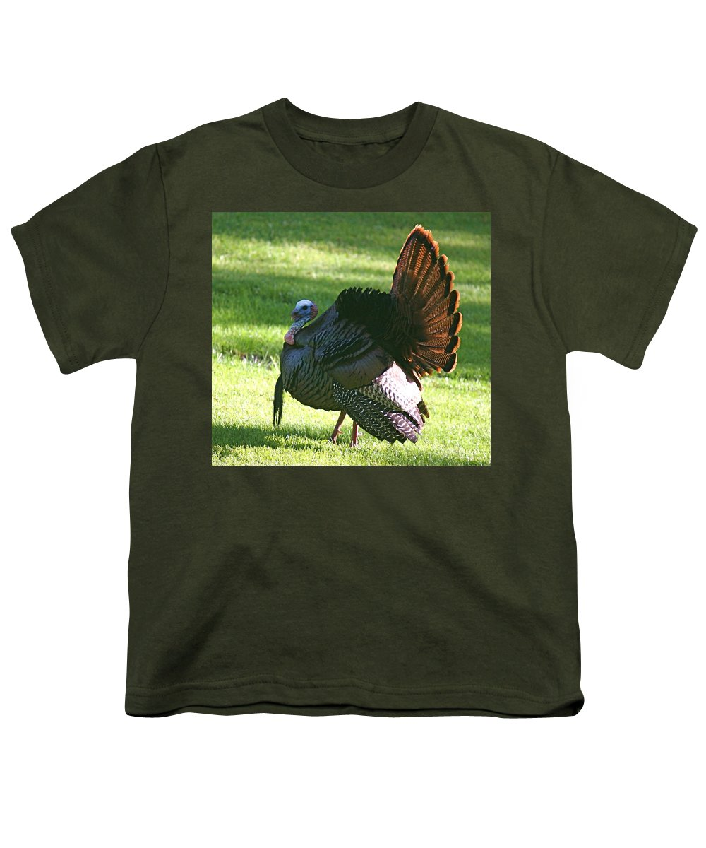 Turkey Youth T-Shirt featuring the photograph The Big Tom by Robert Pearson