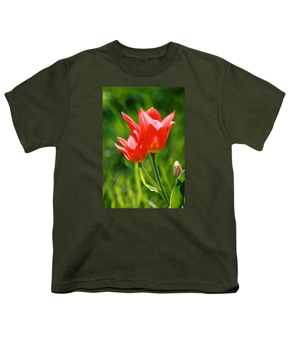 Flowers Youth T-Shirt featuring the photograph Toronto Tulip by Steve Karol