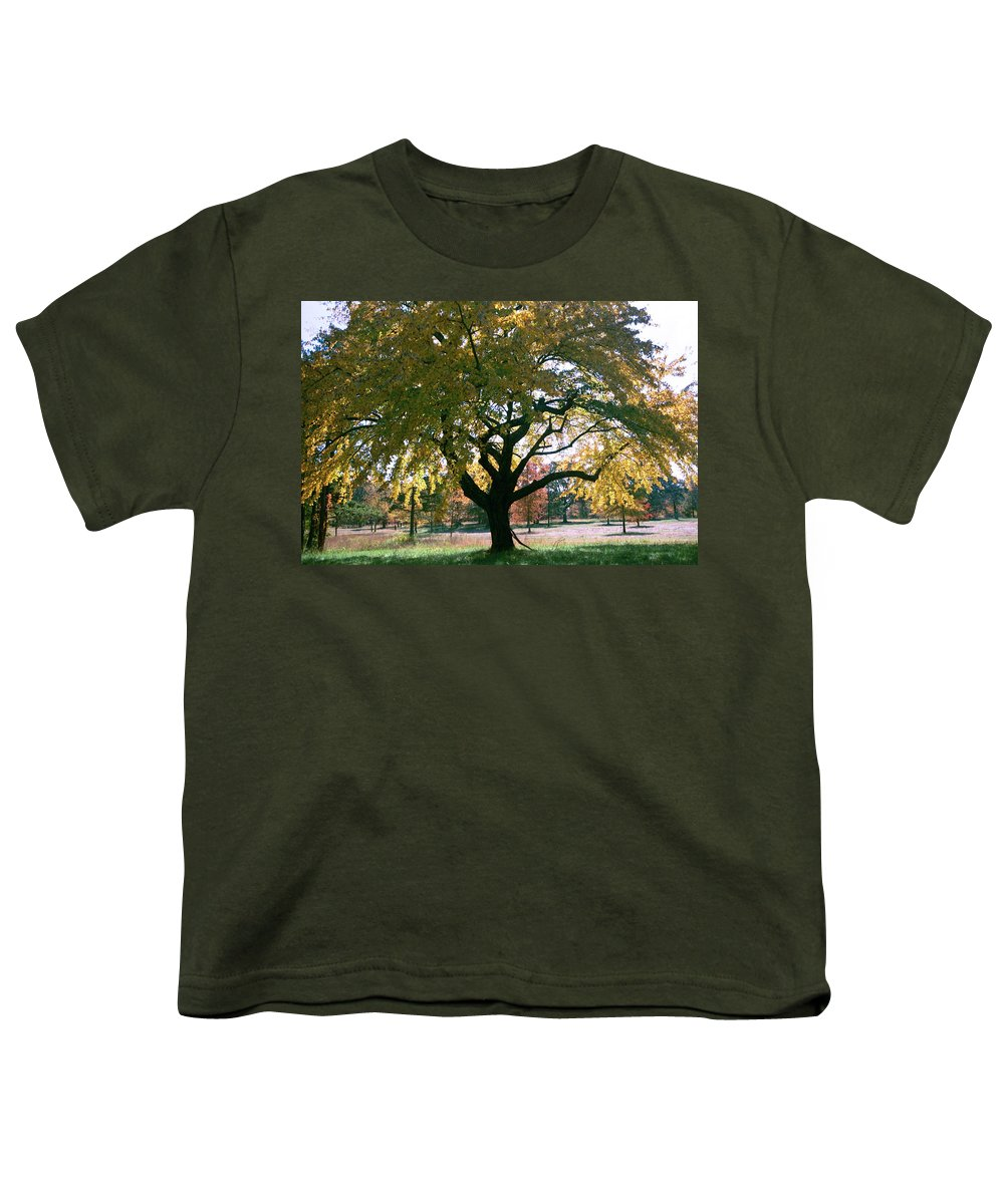 Tree Youth T-Shirt featuring the photograph Tree by Flavia Westerwelle
