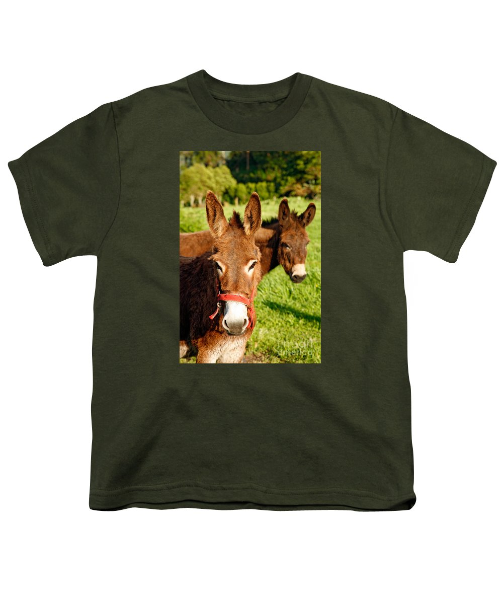 Animals Youth T-Shirt featuring the photograph Two Donkeys by Gaspar Avila